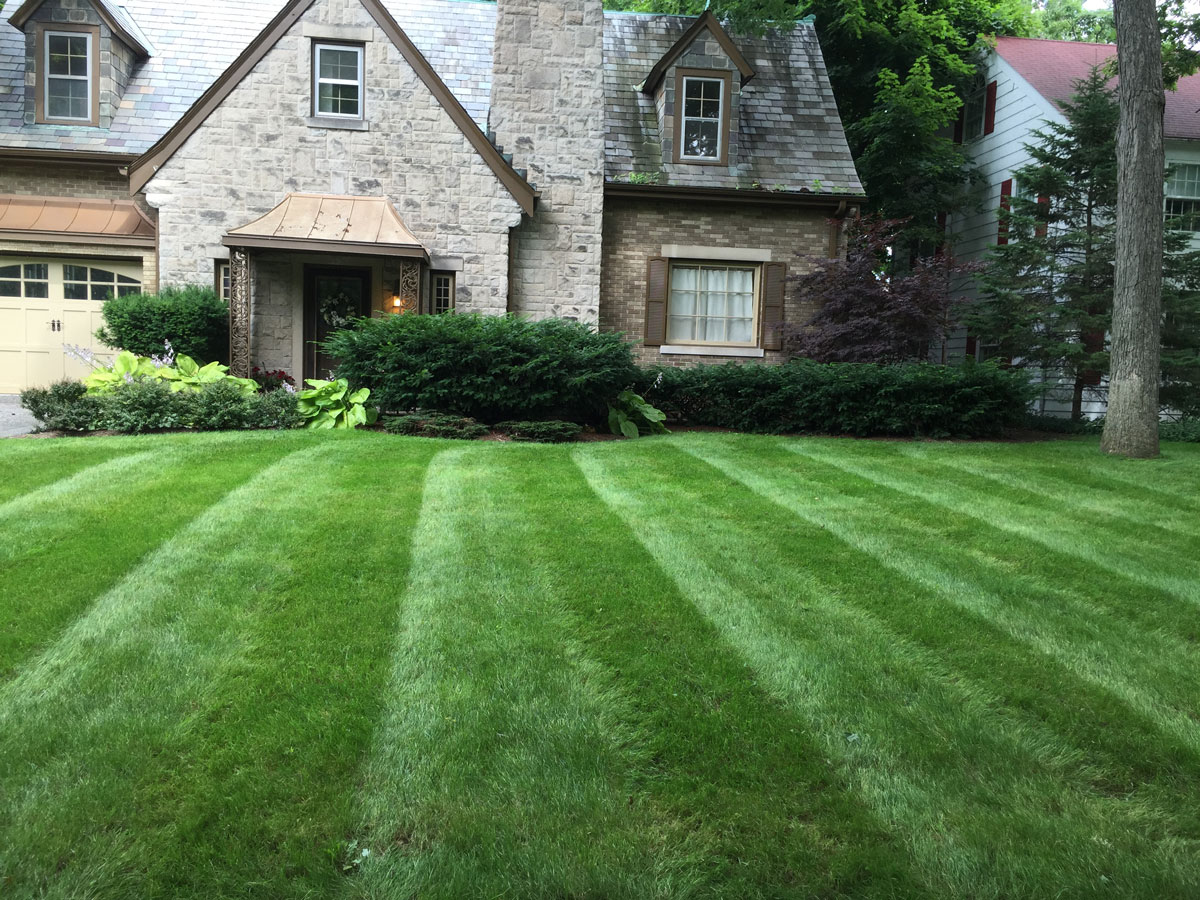 Weekly lawn and landscape maintenance all seasons for Lawn and garden services